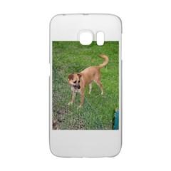 Carolina Dog Full 2 Galaxy S6 Edge