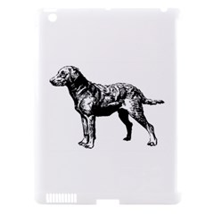 Chesapeake Bay Retriever Drawing Apple iPad 3/4 Hardshell Case (Compatible with Smart Cover)