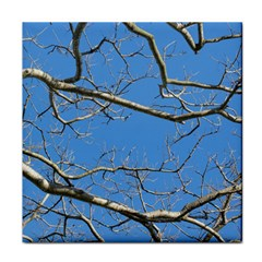 Leafless Tree Branches Against Blue Sky Tile Coasters