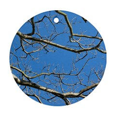 Leafless Tree Branches Against Blue Sky Ornament (Round)