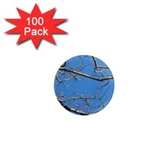 Leafless Tree Branches Against Blue Sky 1  Mini Magnets (100 pack)