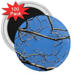 Leafless Tree Branches Against Blue Sky 3  Magnets (100 pack)
