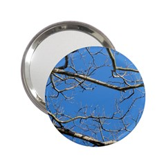 Leafless Tree Branches Against Blue Sky 2.25  Handbag Mirrors