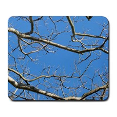 Leafless Tree Branches Against Blue Sky Large Mousepads