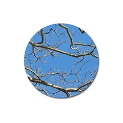 Leafless Tree Branches Against Blue Sky Magnet 3  (Round)