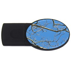 Leafless Tree Branches Against Blue Sky USB Flash Drive Oval (2 GB)