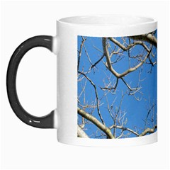 Leafless Tree Branches Against Blue Sky Morph Mugs