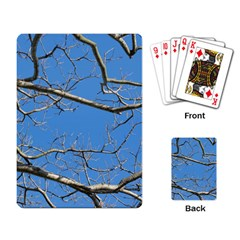 Leafless Tree Branches Against Blue Sky Playing Card