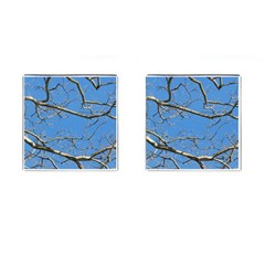 Leafless Tree Branches Against Blue Sky Cufflinks (Square)