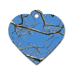 Leafless Tree Branches Against Blue Sky Dog Tag Heart (One Side)