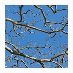 Leafless Tree Branches Against Blue Sky Medium Glasses Cloth