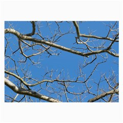 Leafless Tree Branches Against Blue Sky Large Glasses Cloth
