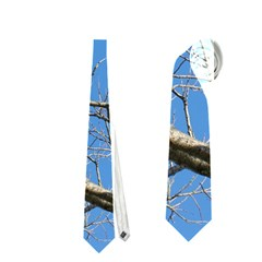Leafless Tree Branches Against Blue Sky Neckties (two Side)