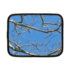 Leafless Tree Branches Against Blue Sky Netbook Case (Small)