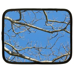 Leafless Tree Branches Against Blue Sky Netbook Case (Large)