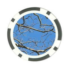 Leafless Tree Branches Against Blue Sky Poker Chip Card Guards (10 pack)