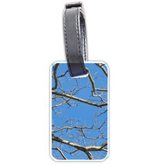 Leafless Tree Branches Against Blue Sky Luggage Tags (Two Sides)