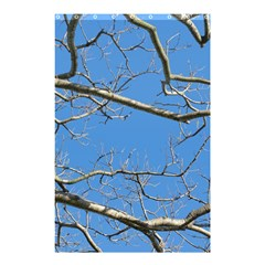 Leafless Tree Branches Against Blue Sky Shower Curtain 48  x 72  (Small)