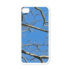 Leafless Tree Branches Against Blue Sky Apple iPhone 4 Case (White)