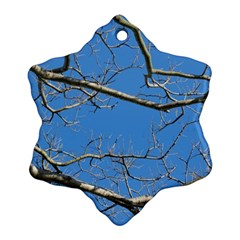 Leafless Tree Branches Against Blue Sky Snowflake Ornament (2 Side)