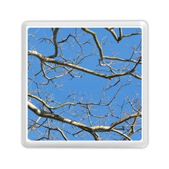 Leafless Tree Branches Against Blue Sky Memory Card Reader (Square)