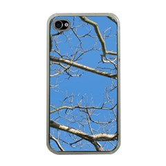 Leafless Tree Branches Against Blue Sky Apple iPhone 4 Case (Clear)