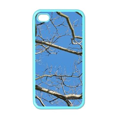 Leafless Tree Branches Against Blue Sky Apple iPhone 4 Case (Color)