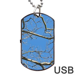 Leafless Tree Branches Against Blue Sky Dog Tag USB Flash (One Side)
