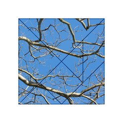 Leafless Tree Branches Against Blue Sky Acrylic Tangram Puzzle (4  x 4 )
