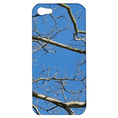 Leafless Tree Branches Against Blue Sky Apple iPhone 5 Hardshell Case