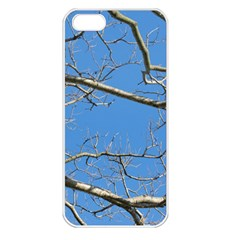 Leafless Tree Branches Against Blue Sky Apple iPhone 5 Seamless Case (White)