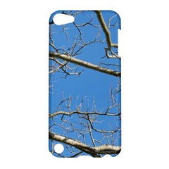 Leafless Tree Branches Against Blue Sky Apple iPod Touch 5 Hardshell Case