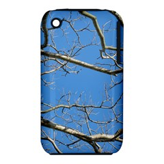 Leafless Tree Branches Against Blue Sky Apple iPhone 3G/3GS Hardshell Case (PC+Silicone)