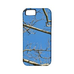 Leafless Tree Branches Against Blue Sky Apple iPhone 5 Classic Hardshell Case (PC+Silicone)