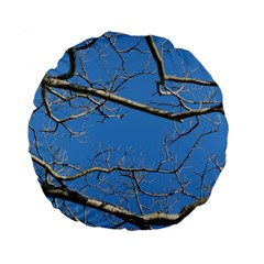 Leafless Tree Branches Against Blue Sky Standard 15  Premium Round Cushions