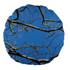 Leafless Tree Branches Against Blue Sky Large 18  Premium Round Cushions