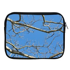 Leafless Tree Branches Against Blue Sky Apple iPad 2/3/4 Zipper Cases