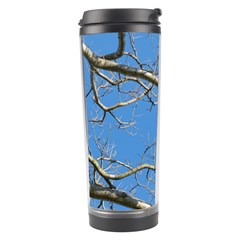 Leafless Tree Branches Against Blue Sky Travel Tumblers