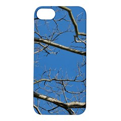 Leafless Tree Branches Against Blue Sky Apple iPhone 5S Hardshell Case