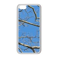 Leafless Tree Branches Against Blue Sky Apple iPhone 5C Seamless Case (White)