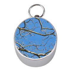Leafless Tree Branches Against Blue Sky Mini Silver Compasses