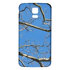 Leafless Tree Branches Against Blue Sky Samsung Galaxy S5 Back Case (White)