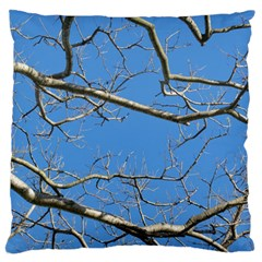 Leafless Tree Branches Against Blue Sky Large Flano Cushion Cases (Two Sides)