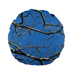 Leafless Tree Branches Against Blue Sky Standard 15  Premium Flano Round Cushions
