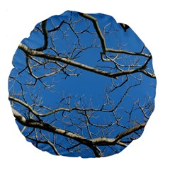 Leafless Tree Branches Against Blue Sky Large 18  Premium Flano Round Cushions