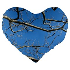Leafless Tree Branches Against Blue Sky Large 19  Premium Flano Heart Shape Cushions