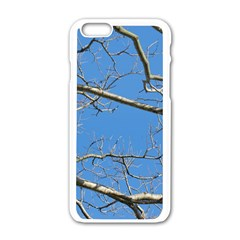 Leafless Tree Branches Against Blue Sky Apple iPhone 6/6S White Enamel Case