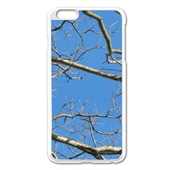 Leafless Tree Branches Against Blue Sky Apple iPhone 6 Plus/6S Plus Enamel White Case