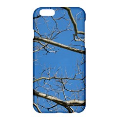 Leafless Tree Branches Against Blue Sky Apple iPhone 6 Plus/6S Plus Hardshell Case