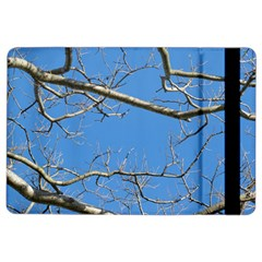 Leafless Tree Branches Against Blue Sky iPad Air 2 Flip